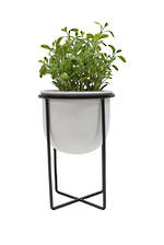 Short Planter w/Iron Stand White